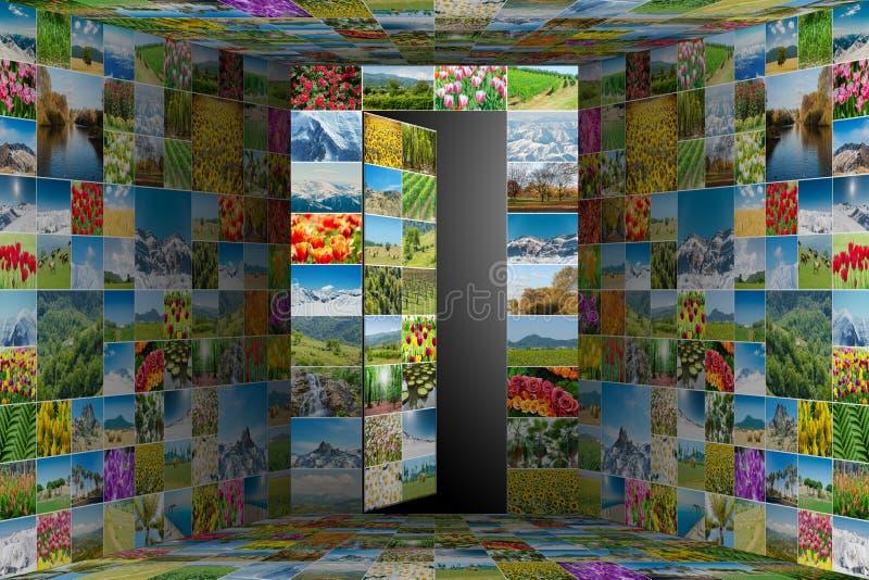Die Sammlung von Naturfotos im Collagenkonzept vektor abbildung