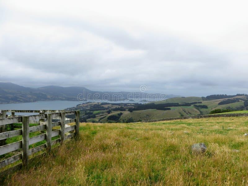 Die schöne Landseite der Otago-Halbinsel, außerhalb Dunedins, Neuseeland lizenzfreie stockfotos