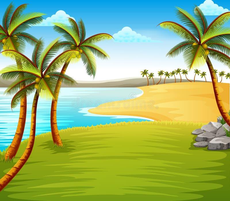 Die schöne tropische Strandansicht mit einigen Kokosnussbäumen auf der Küste nahe dem grünen Feld lizenzfreie abbildung