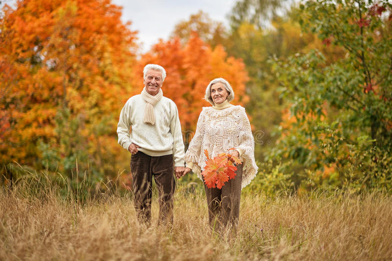 Die schönen älteren Paare, die in den Herbst gehen, parken lizenzfreies stockbild