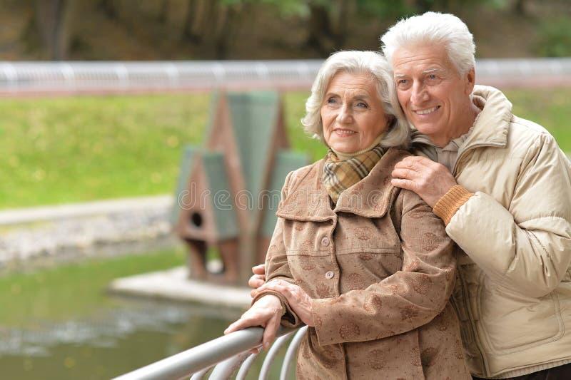 Die schönen lderly Paare, die in den Herbst gehen, parken stockbilder
