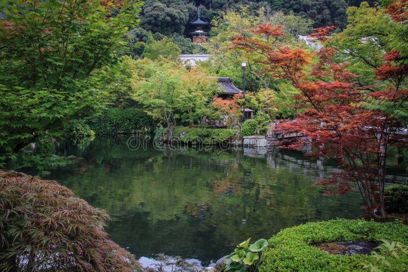 Die schönen und bunten landschaftlich gestalteten Gärten von Kyoto, Kyoto, Kansai Region, Japan lizenzfreie stockfotografie