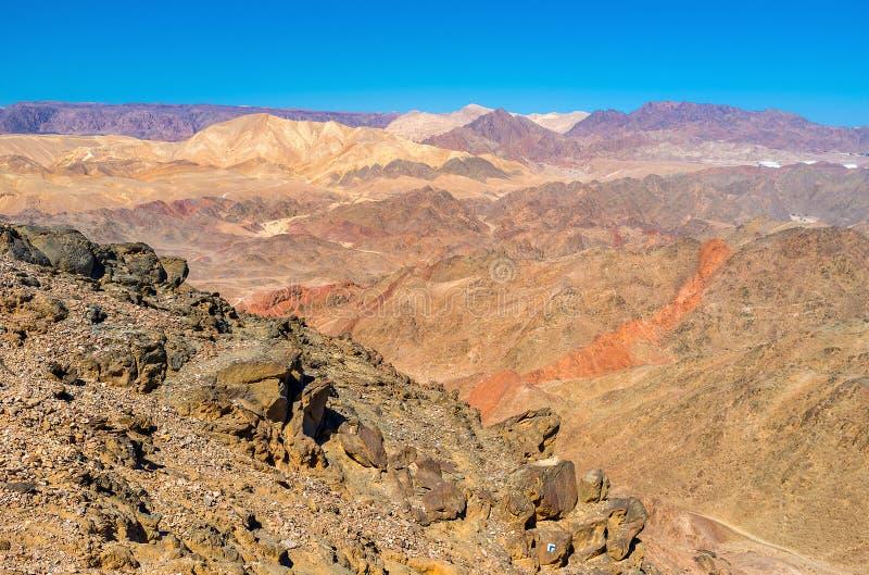 Die Schönheit der Wüste stockbild