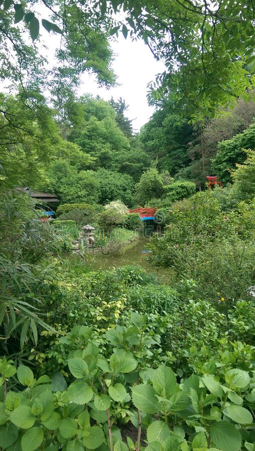Die Schönheit des botanischen Gartens in Klausenburg Napoca stockbild