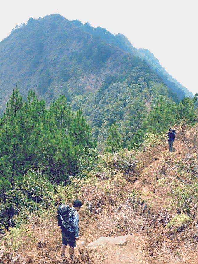 Die Schönheit von Bandungs-Berg lizenzfreie stockfotos