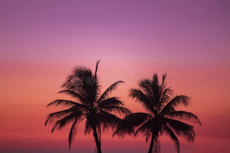 Die schönste Farbe im Ozean lizenzfreie stockfotografie