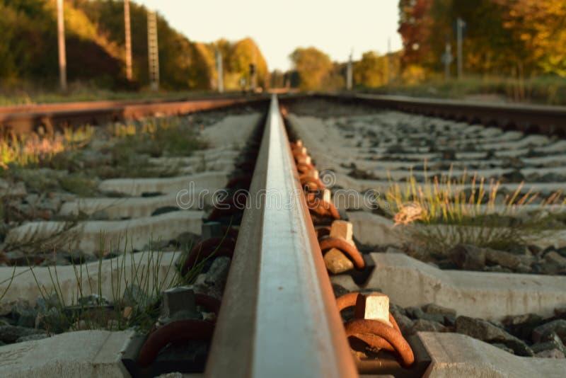 Die Schienen vom Zug wird in Unendlichkeit durch Natur gesetzt Reise stockfotografie