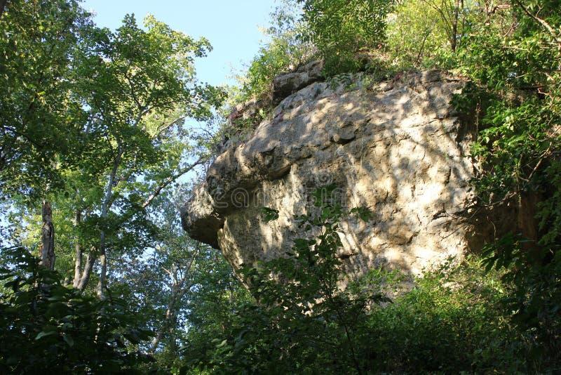 Die Schlange Simulacra auf der Klippe unter Schlangen-Hügel lizenzfreies stockbild