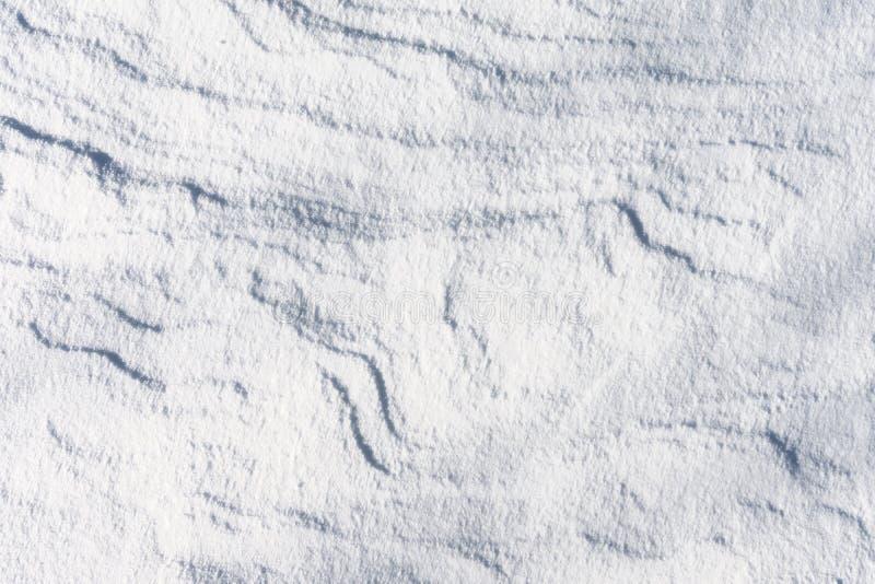 Die Schneebeschaffenheit, Schneedünen Die Ansicht von der Oberseite stockfotos