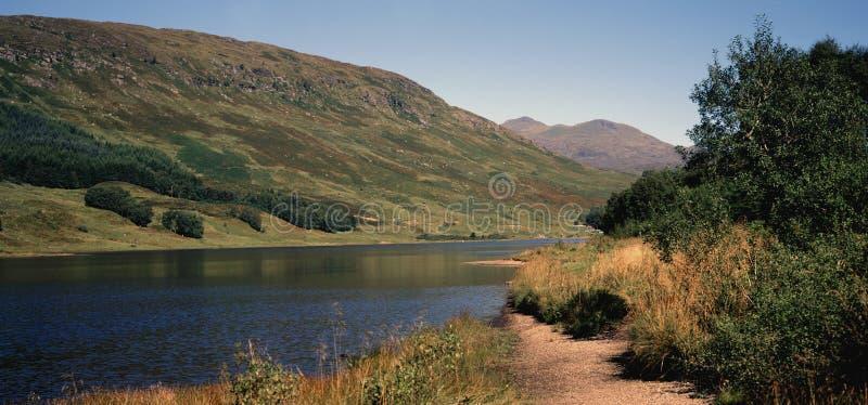 Die schottischen Hochländer stockfotos