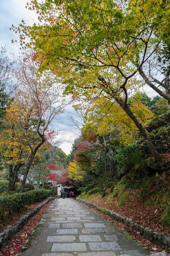 Die Schritte, die unten mit Herbst führen, färbten Blätter stockbild