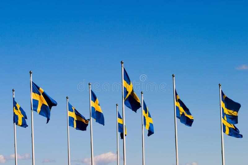 Die Schwedeflaggen stockfoto