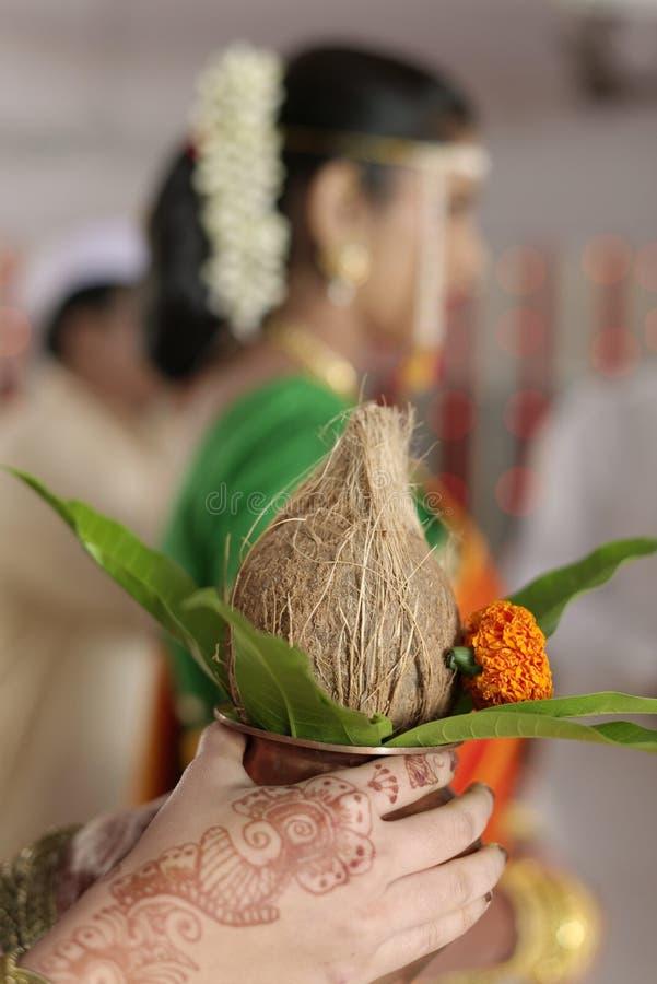 Die Schwester der indischen hindischen Braut mit Kokosnuss in ihren Händen am Ritual des Austausches der Girlande in der Maharasht lizenzfreie stockbilder