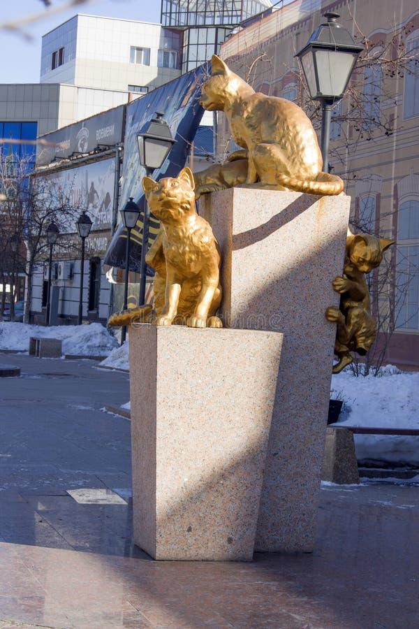 Die sibirischen Katzen quadratisches Tyumen, am 18. März 2016 lizenzfreies stockfoto