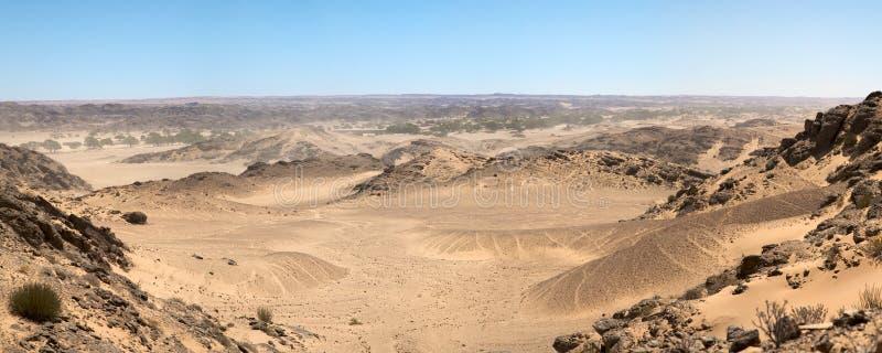 Die Skeleton Küste-Wüste stockbilder