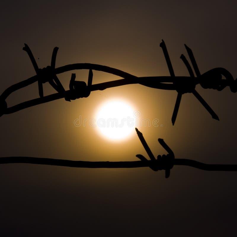 Die Sonne im Gefängnis lizenzfreie stockbilder