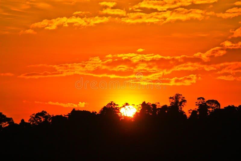 Die Sonne steigt mit orange Himmel und dem Schattenbild des Baums lizenzfreie stockbilder