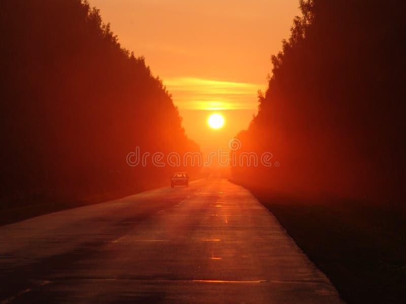 Die Sonneblätter auf dem Westen stockfotografie