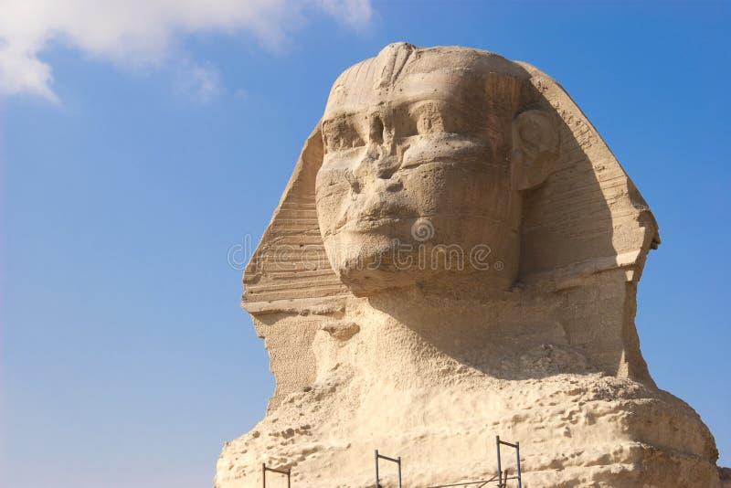 Die Sphinx lizenzfreie stockfotos