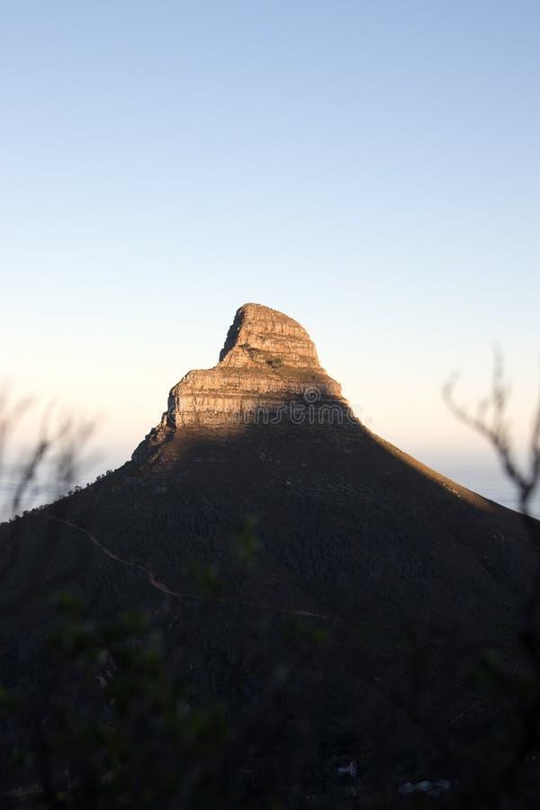 Die Spitze von Löwen gehen in Kapstadt bei Sonnenaufgang voran vektor abbildung