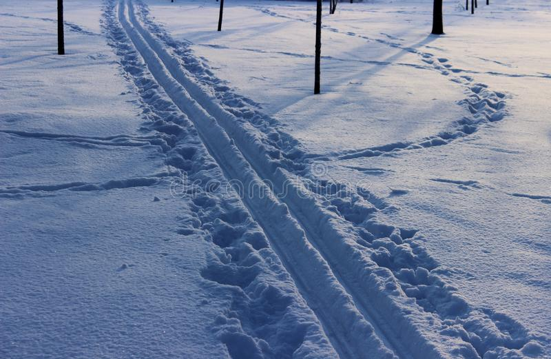 Die Spur der Skis stockbild