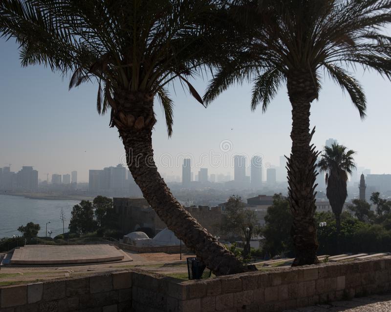 Die Stadt von Tel Aviv von Abrasha-Park über der Bucht in Jaffa lizenzfreie stockfotografie