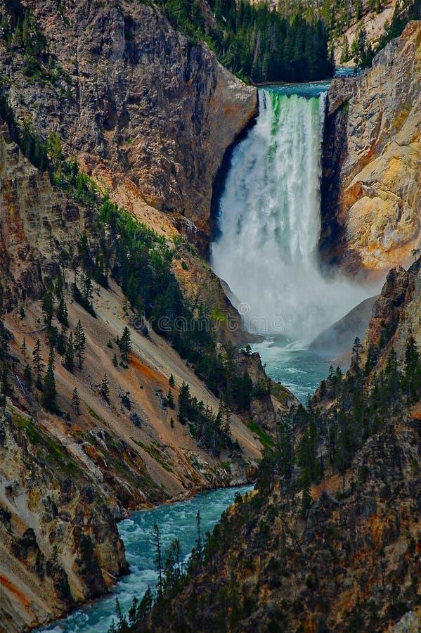 Die starken und mächtigen Yellowstone-Fälle stockbilder