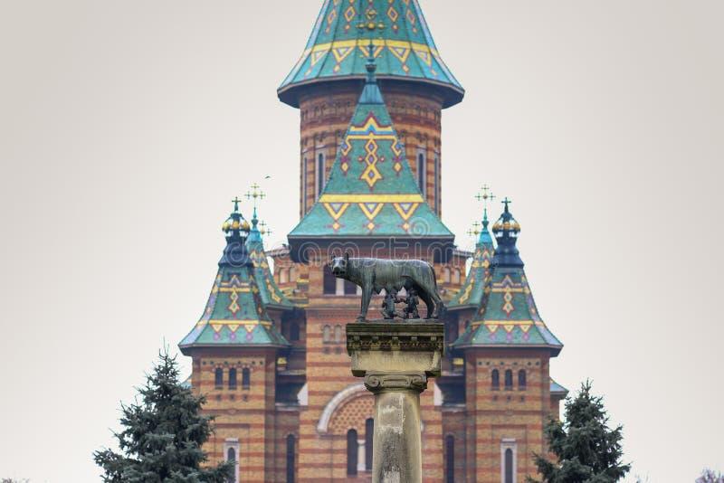 Die Statue Lupa Capitolina mit der orthodoxen Stadtkathedrale im Hintergrund in Timisoara lizenzfreie stockfotos