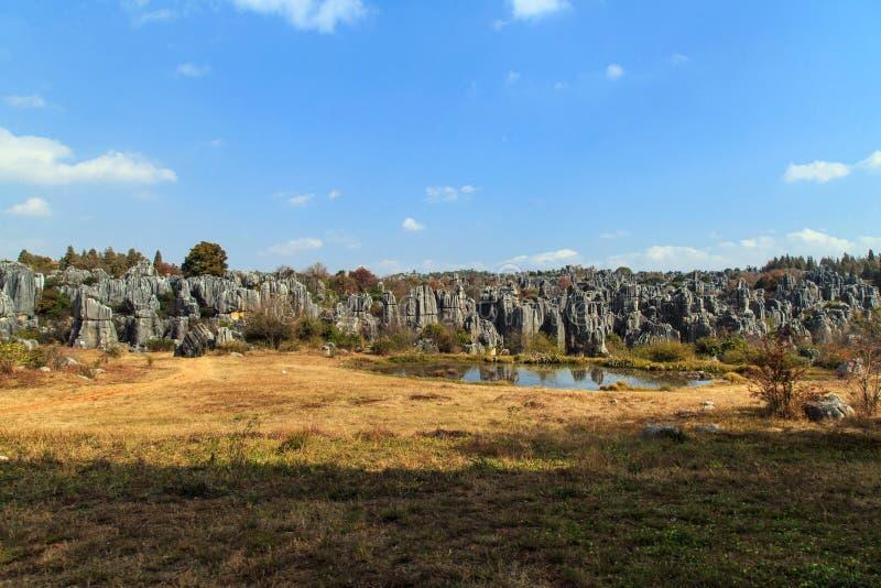 Die Steinwaldgeologie-Parklandschaft stockfotos