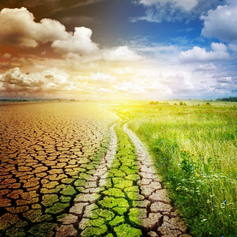 Die Straße, welche die Wüste und die Oase trennt Konzept auf Ökologie, der globalen Erwärmung und Umweltschutz lizenzfreie stockfotografie