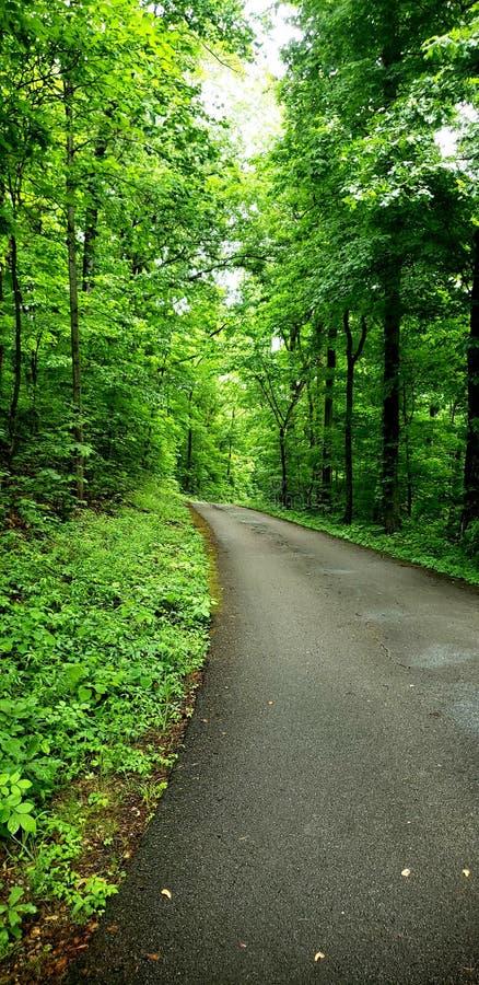 Die Straße zum Garten Eden stockfotografie