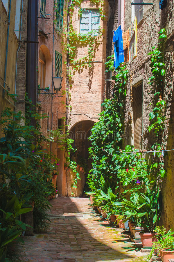 Die Straßen der alten italienischen Stadt von Siena in Toskana stockfotografie