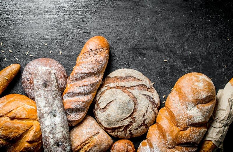 Die Strecke der verschiedenen Arten des wohlriechenden Brotes stockfoto