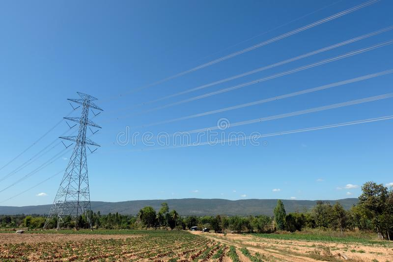 Die Stromleitung Durchlauf die Weise im Bauernhof in Thailand stockbilder