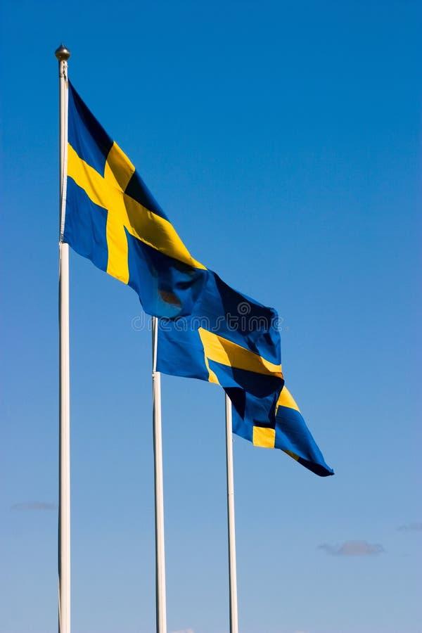 Die Swedishmarkierungsfahnen lizenzfreies stockbild