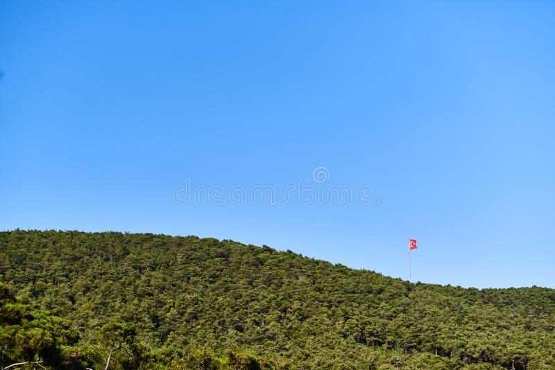 Die Türkei-Flagge mit einem blauen Himmel und Wald um ihn stockfotos