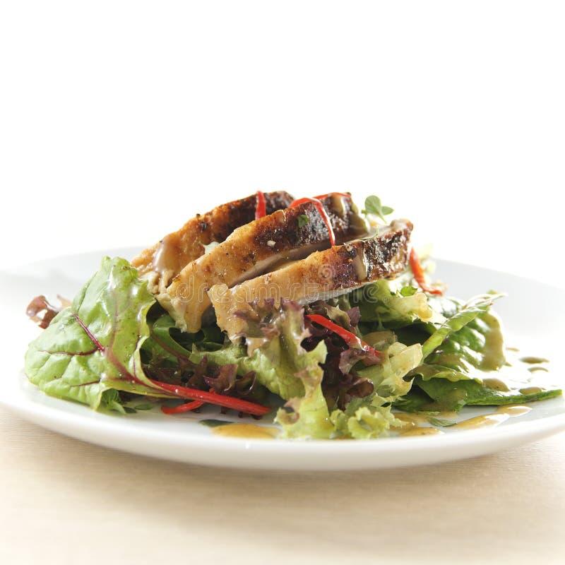 Die Türkei-Salat stockbild