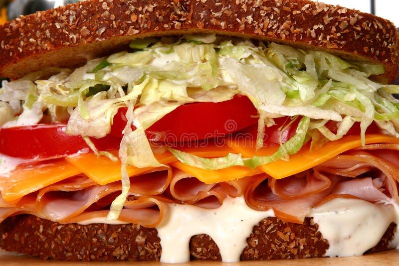 Die Türkei-Sandwich stockbild