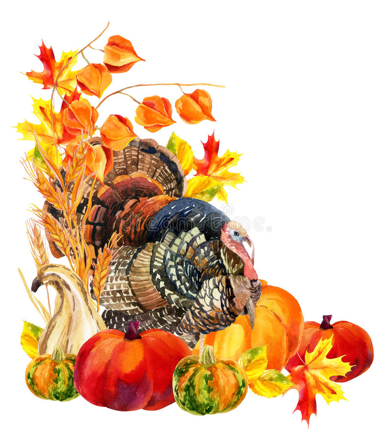 Die Türkei-Vogel mit Ernte vektor abbildung