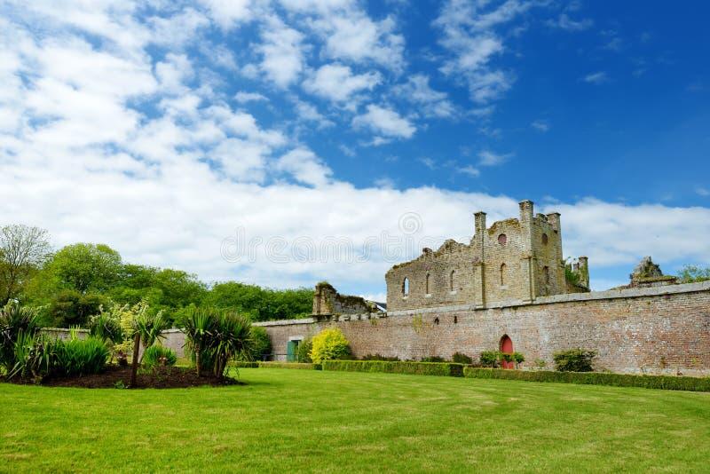 Die Türme und die Drehköpfe von Ducketts Grove, ein ruiniertes großes Haus des 19. Jahrhunderts in der Grafschaft Carlow, Irland lizenzfreie stockfotografie