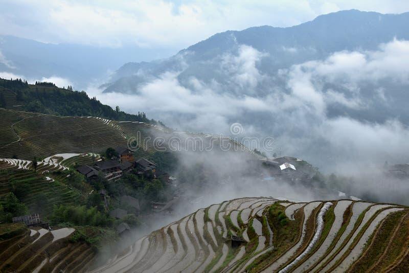 Die terassenförmig angelegten Reisfelder in autonomer Region Guangxis Zhuang in China versteckt in den Wolken stockbilder