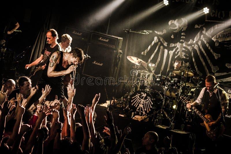 Die Toten Hosen royalty free stock photo