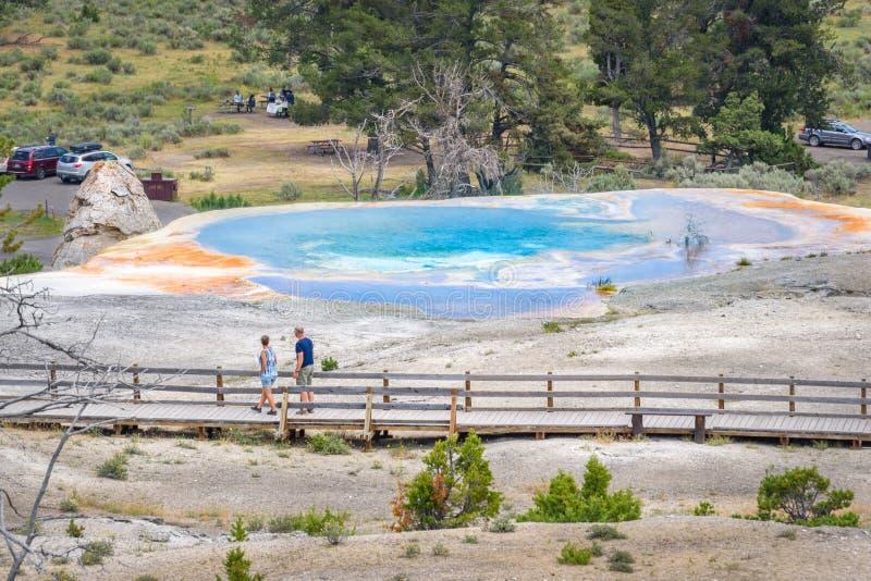 Die Touristen, die Hügel aufpassen, entspringen nahe bei Liberty Cap in Mammoth Hot Springs Bereich, Yellowstone-Park lizenzfreie stockbilder