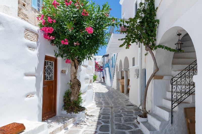 Die typischen cycladic, rehabilitierten Gassen mit bunten Blumen bei Parikia auf der Insel von Paros lizenzfreie stockfotos