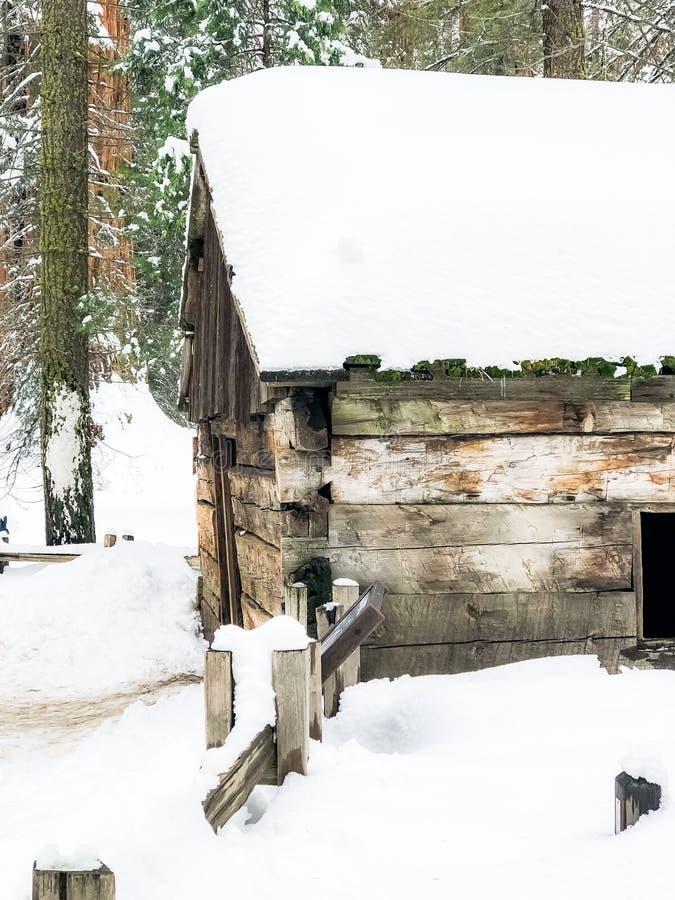 Die verlorene Kabine im Wald stockbild