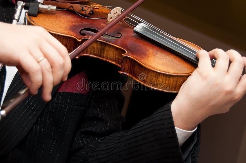 Die Violine lizenzfreie stockfotos