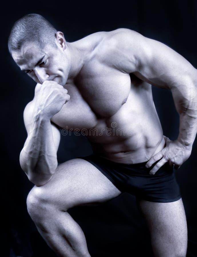 Die vollkommene muskulöse Mannaufstellung getrennt stockfotos