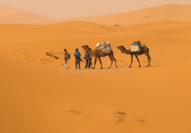 In die Wüste stockfotografie