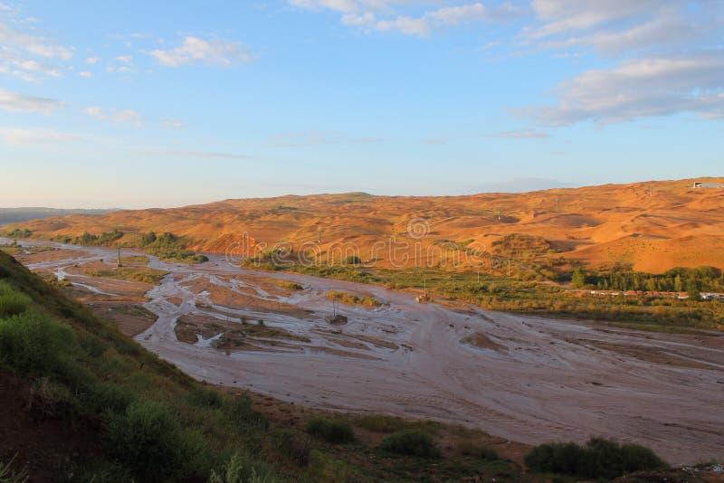 Die Wüste stockfotografie