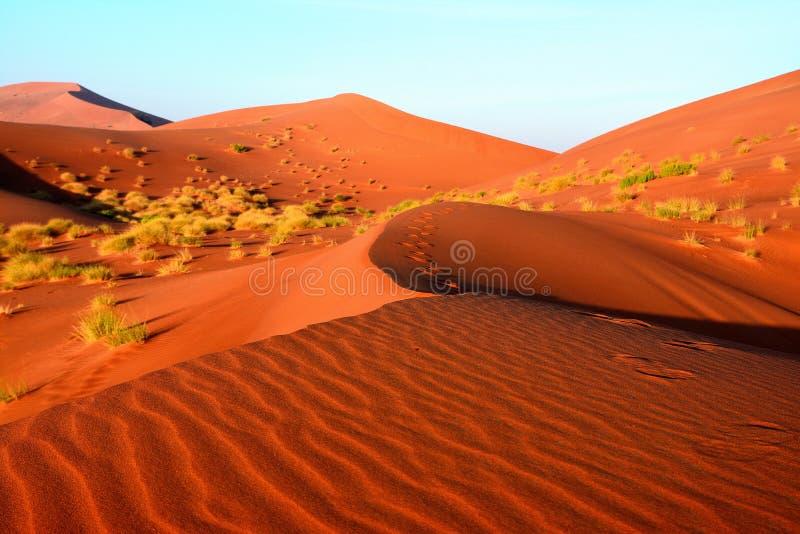Die Wüsten in Oman stockbild